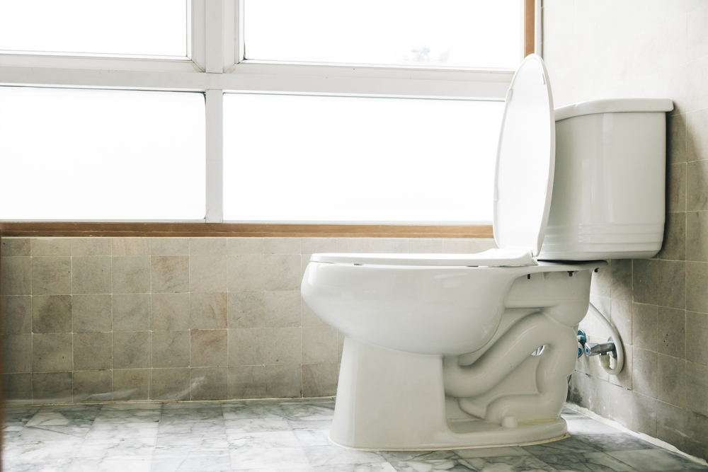 causes solutions whistling toilet