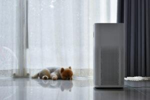 HVAC air quality shedding pets