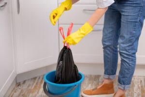 DIY garbage disposal cleaning
